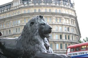 lion in trafalgar sq